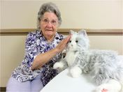 Comfort Companions a Joy For All