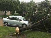 May 17, 2017 storm