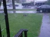 Hail in North Haverhill NH