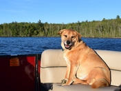 Spencer's first ride on the new boat!
