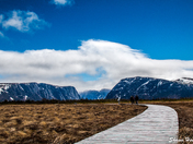 The Walk towards Gros Morne