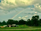 Rainbow by David