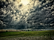 Sun beating down on the corn through angry clouds