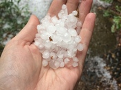 Hail in Greenhills