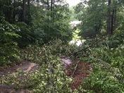 Hamptonville NC