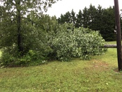 Hamptonville, NC Storm Damage