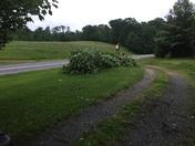 5/24 Tornado damage