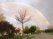 Rainbows over Grafton