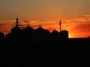 Heartland Coop- Ankeny, Iowa