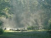 Bonnechere Provincial Park