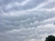 Mammatus clouds in lowell