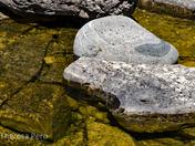 Sunbaked Rocks