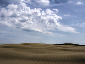 Saskatchewan's Great Sandhills