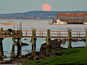 "The ""Strawberry Moon"" from Gray's Beach in Kingston last night..."