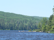 Acray lake in algonquin