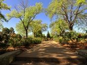 Cornell Park, Santa Fe New Mexico