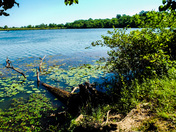 Red Haw State Park