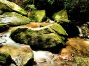 On Big Sandy Creek At Stone Mountain State Park