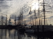 Tall Ships Greet New Morning
