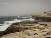 On Foggy Shores
