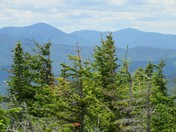 New Hampshire's Dry River Wilderness