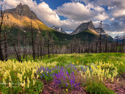 Glacier National National Park