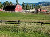 Gang Ranch