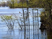 Fences in Flood