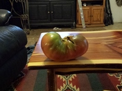 1 1/2 lbs tomato