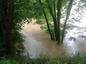 Cannery creek bottoms n Cloverport KY