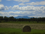 Time to bale the hay