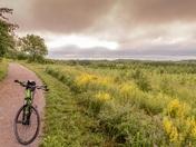Bike on a field