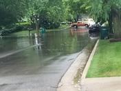 Elkhorn flooding