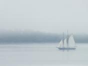 Bluenose - Halifax Harbour