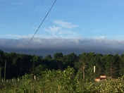Morning Ridge of Clouds