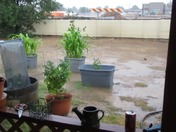 RAIN IN ALBUQUERQUE