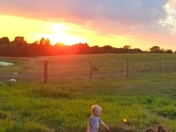 My grandson enjoying life in the country
