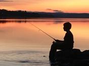 Evening Fish