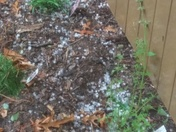 Hail today in Wilkesboro