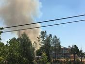 Auburn Fire