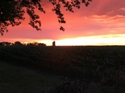 Backyard veiw sunset July 2017