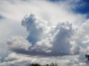 Different photos taken in Albuquerque, NM