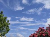 Beautiful Carolina blue morning