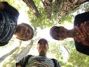 John Muir Woods National Monument