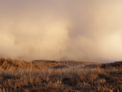 Stormy Alberta Skies
