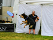 National Night Out Frisbee Dogs