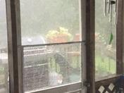 Holy Thunderstorm Harvey!