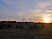 Back Forty Sunset