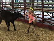 Fun at the Sarpy County Fair