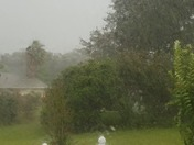 Summerfield FL Thunder Storm